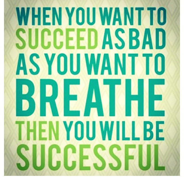 Quote- When You Want To Succeed